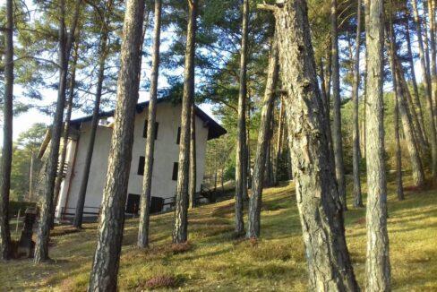 Appartamento panoramico Val di Non Trentino